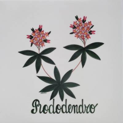 Rododendro Decori Ceramiche Lazzara Paluzza